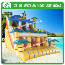 Residential inflatable jungle slide