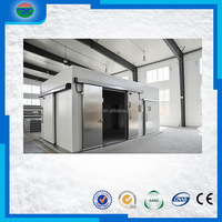 Latest Fashion hot sale walk-in freezer cold room for ice plant