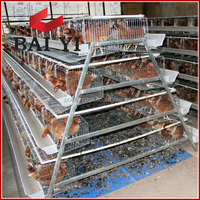 Anti Rust Layer Egg Chicken Cage/Poultry Farm House Design