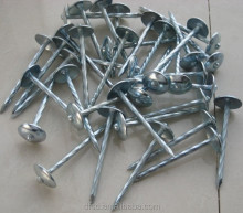Hot ! nails manufacturer supply the galvanize/umbrella head/large head roofing coil nails big head factory price in china