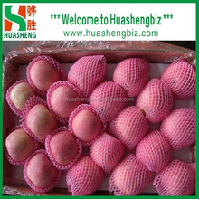 New Crop Shandong Fuji Apple with foam package