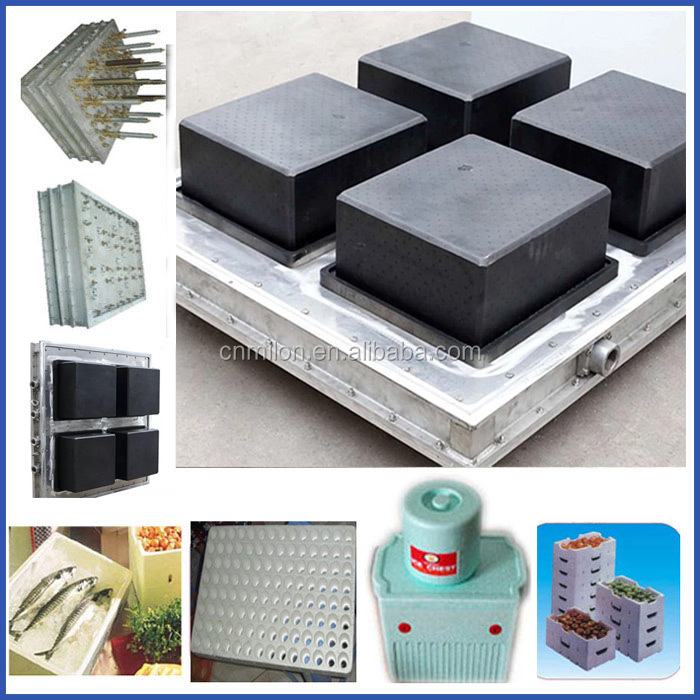 Best quality Expandable Polystyrene Mould / Foam Box Mould / EPS Mould