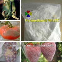 Factory supply 25%WP Pyrimethanil fungicide