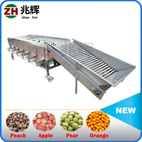 Industrial tomato grading machine/Commercial fruit sorter / Automatically stem vegetable grader