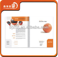 wholesale all style promotional sample school brochures