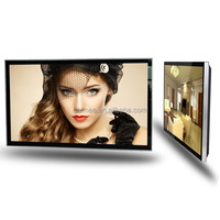 "18.5""21.5""32""42""47""55"" HD Resolution lcd advertising display mass production OEM/Digital signage display/Digital signage players"