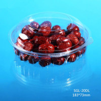 wholesale food salad plastic box bowl