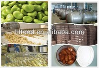 Chinese supply frozen whole peeled broad bean