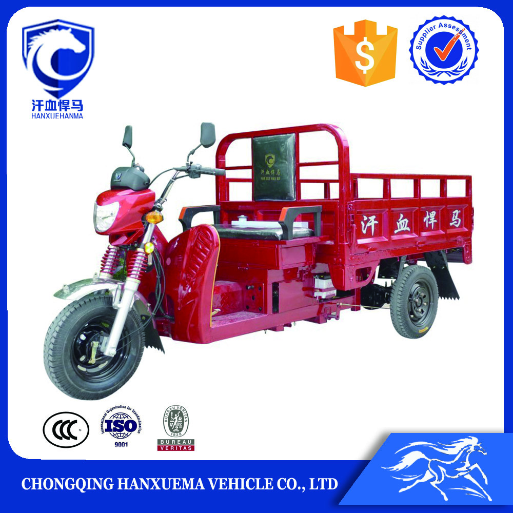 Motor tricycle cargo bike