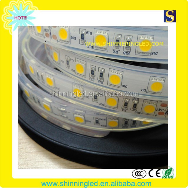 Mexico hot sales IP68 smd5050 Dc12/24v swimming pool led strip lighting