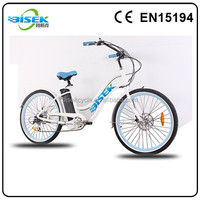 rear wheel drive electric bike beijing from CHANGZHOU BISEK