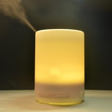 Multifunctional decorative essential oil diffuser,commercial humidifier improving enviroment