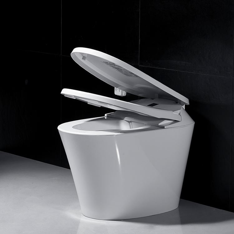 Chinese sanitary ware water spray wc toilet, popular smart toilet
