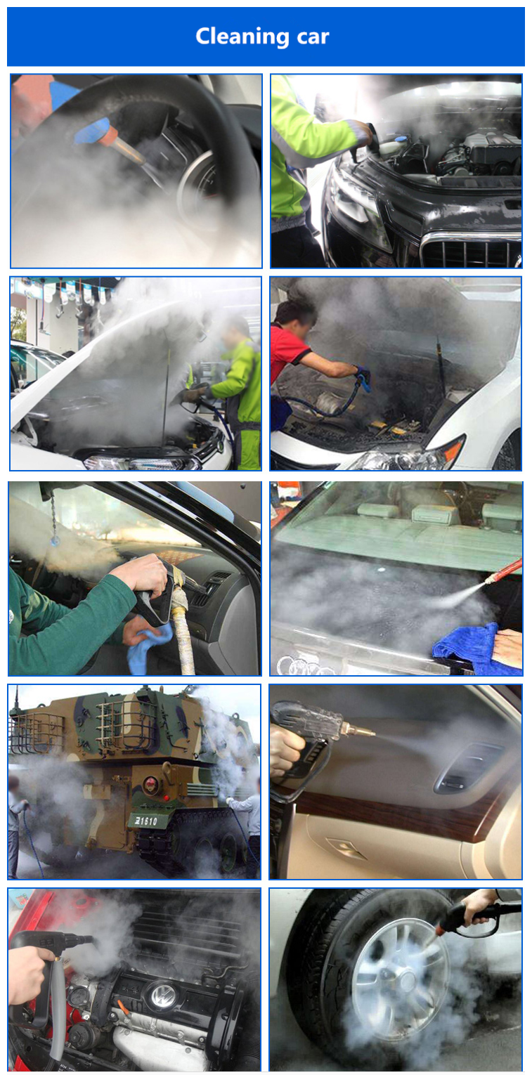Wholesale high pressure portable car steam cleaner 10 bar and steam cleaner thermostat