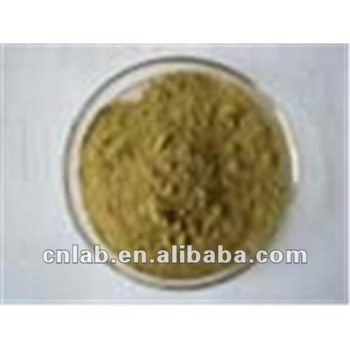 doubleteeth angelica root extract