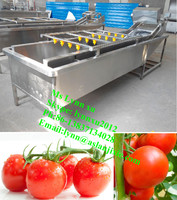 bubble vegetable washer / Commercial vegetable washing machine