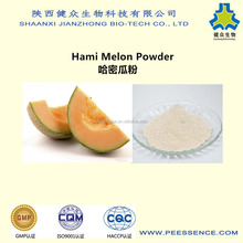 High quality and lowest price 100% natrual Hami melon juice powder ,Colors in ice cream