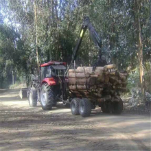 Log Trailer With Crane Forestry Machine