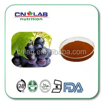 Wholesale Natural Fruit Extract Grape Seed Extract for Sale