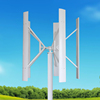 High performance vertical axis silent windmill generator 2kw/wind turbine prices