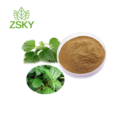 GMP Factory directly Supply High Quality Sting Nettle Extract Powder