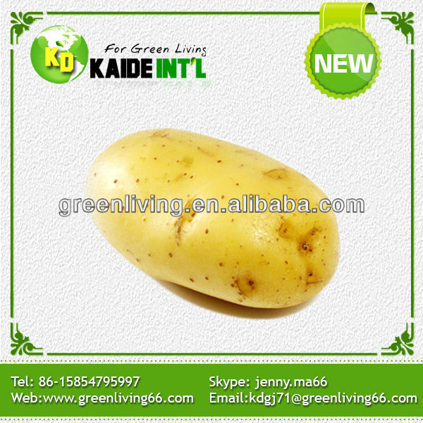 2014 Chinese planting fresh potato price per ton (shandong)(best quality and price)