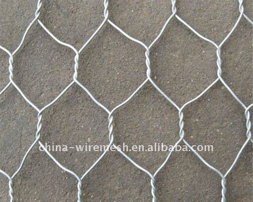Specialized Production Chicken Wire Mesh