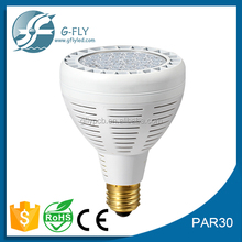 High Quality WW/NW/CW CE and ROHS Approved CRI80 80lm/w 45W PAR30 LED Bulb