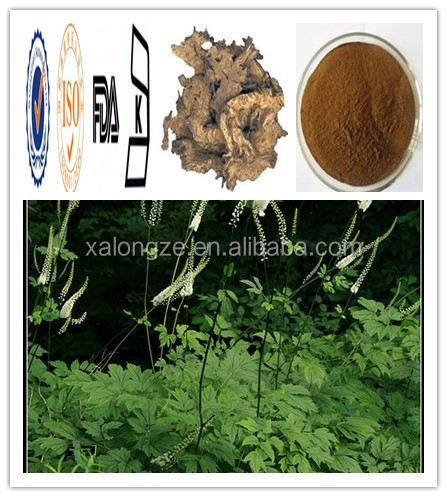 Triterpene Glycosides2.5~8 % Black Cohosh Extract CAS NO: 8047-15-2