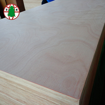 18mm Thick Okoume Plywood Used For Door