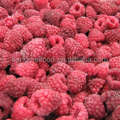 Wholesale IQF Berries/ Raspberry/ Blueberry/ Blackberry From China