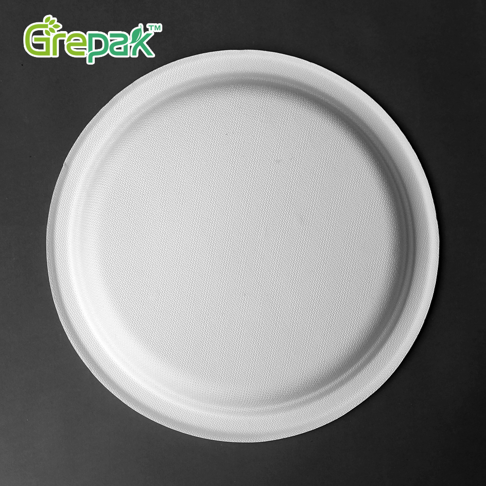 Eco-friendly tableware disposable biodegradable sugarcane bagasse 10 inch round <strong>plate</strong>