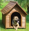 High quality Eco-friendly Ps material dog kennel
