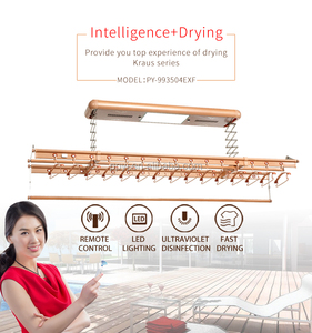 electric ceiling clothes drying rack