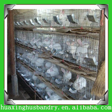 galvanized metal rabbit cages poultry layer cages