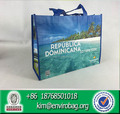 recycled shopping bag non woven