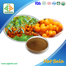 Organic Seabuckthorn / Sea Buckthorn Fruit Extract Powder