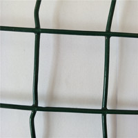 (Galvanized/PVC Coated) Strong Quality Welded Wire Mesh