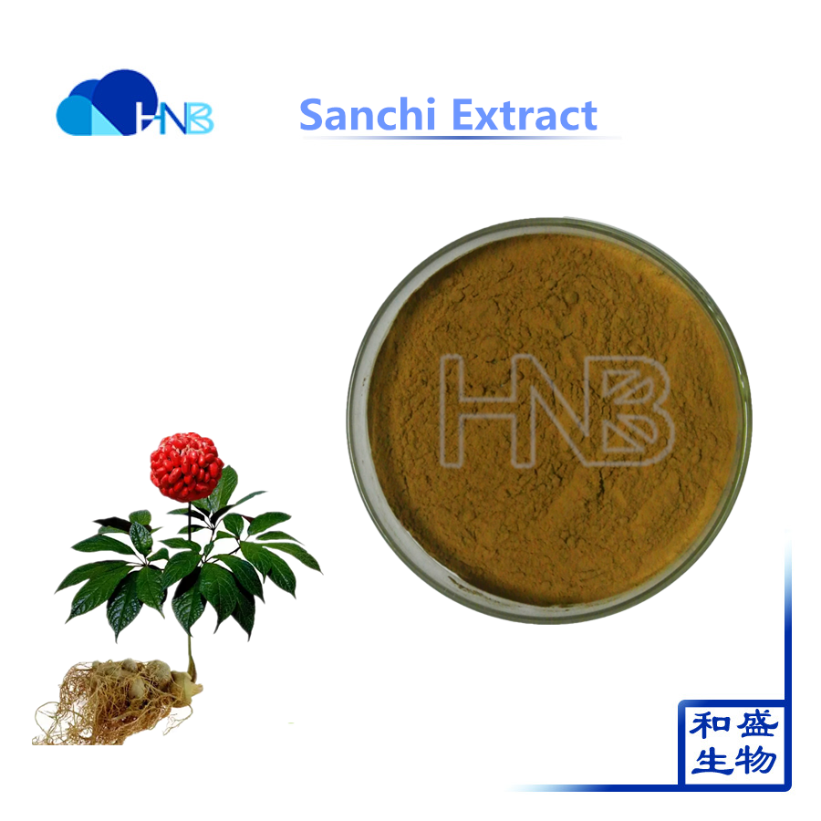 nutraceutical product panax notoginsenosides 80% herbal extract from sanchi