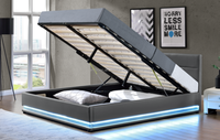 Luxury LED PU Faux Leather Storage gas lift Bed 1165-1G