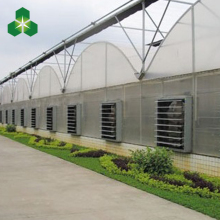 low cost agricultural tunnel poly film greenhouse