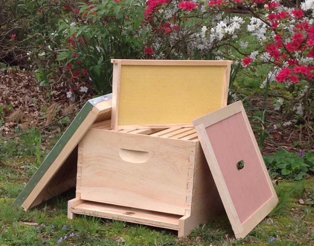 10- frame complete langstroth Beehive with frames and foundation