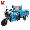 electric tricycle for cargo and passenger/Fashionable and high quality e-tricycle/pure copper brushless electric tricycle