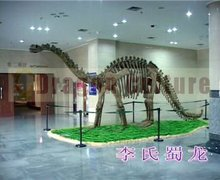 original size simulation dinosaur fossils for sale