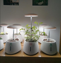 Green Pet Mini Smart Garden, Intelligent Automatic Growing Garden System With LED Lamp Lightening