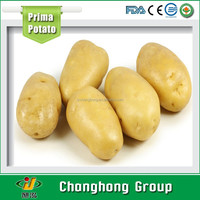 [HOT]Holland potato/fresh potatos suppliers/potato fresh