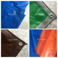 PE Tarpaulin ,PE Tarps factory,Factory Directly!