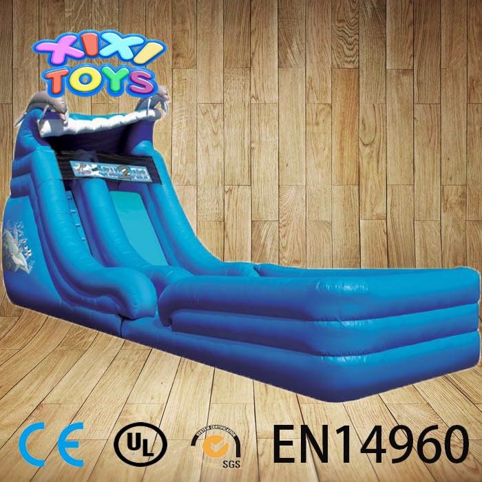 Dolphin Water Slide Inflatable, Inflatable Water Slides With Pool