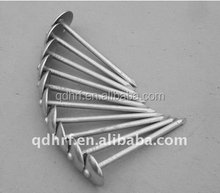 Galvanized Umbrella head Roofing Nails stainless steel wire nails