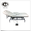 DTY Electric facial bed Massage Table with Motorized Reclinable height and Backrest